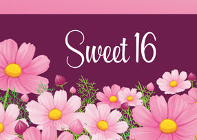 52526 Sweet 16 Birthday With Pink Daisies