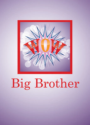 51908A Big Brother, Baby Brother Congratulations WOW!