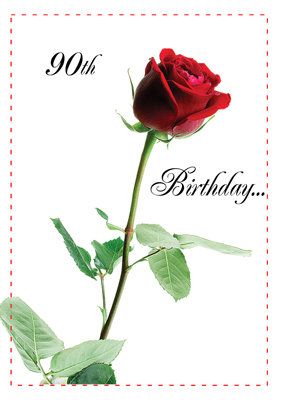 2722 90th Birthday Rose