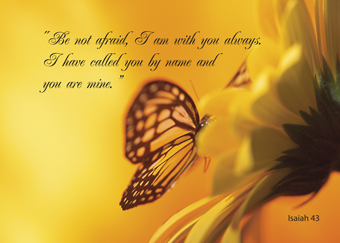 2607 Be Not Afraid Butterfly Thinking of You Religious