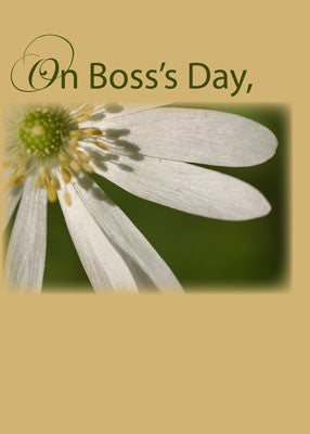 4003 Boss's Day White Flower