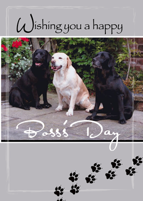 4004 Boss's Day From All of Us, Labs Dogs