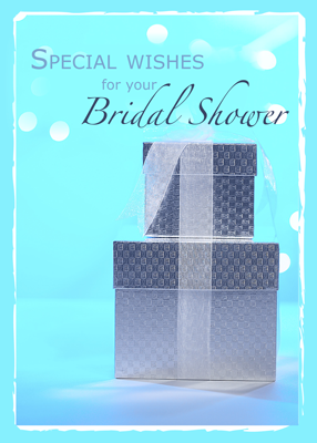 3978 Bridal Shower Gifts