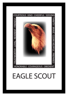 3499 Eagle Scout Virtues