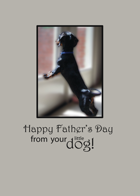 3481 Father's Day From Dog