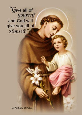 4141 Feast of St. Anthony, Brown