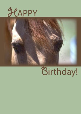 4340 Horse Eyes Birthday