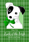 3775E Jack Russell Terrier Dog With St. Patrick's Day Clover
