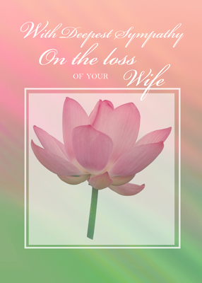 3431 Sympathy Loss of Wife