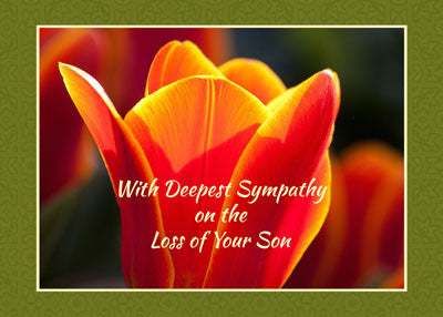 52279 Loss of Son Sympathy, Religious Light of Christ Sunset
