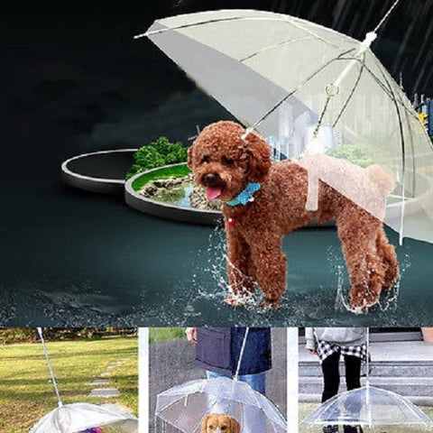 SMALL DOG UMBRELLA WITH LEASH - fitnessbeststore