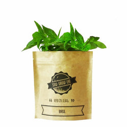 Herb in a Bag - Basil - Bailey&Rufus