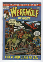 Werewolf By Night #2 A Wild Beast At Bay Awesome Ploog Art Bronze Age Horror Key VGFN