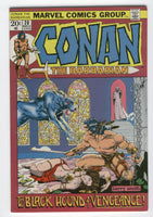 Conan The Barbarian #20 The Black Hound Of Vengeance Bronze Age Barry Smith Key FVF