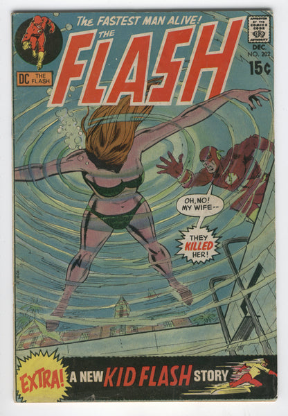 Flash #202 The Fastest Man Alive Silver Age Classic VG