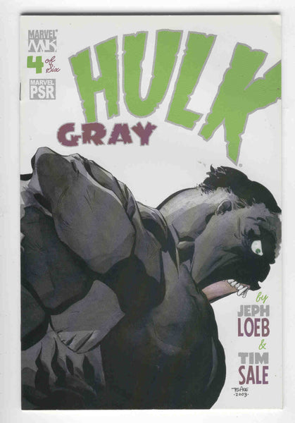 Hulk Gray #4 Jeph Loeb & Tim Sale VF+