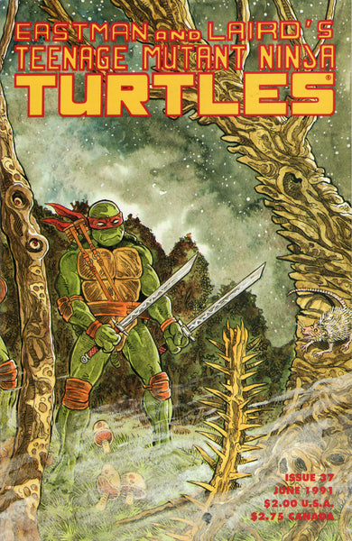 Teenage Mutant Ninja Turtles #37 VFNM