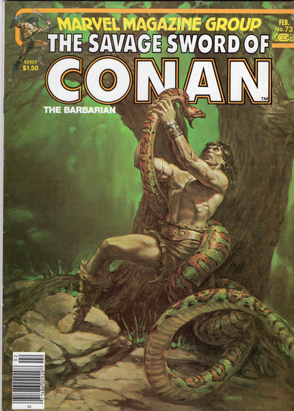 Savage Sword Of Conan #73 The Changeling Quest! News Stand Variant FVF