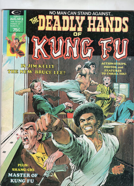 Deadly Hands Of Kung Fu Magazine #3 Neal Adams Cover Shang-Chi Awesome Bronze Age Issue VGFN