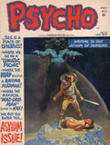 Psycho #12 HTF Skywald Magazine Bronze Age Horror VG-