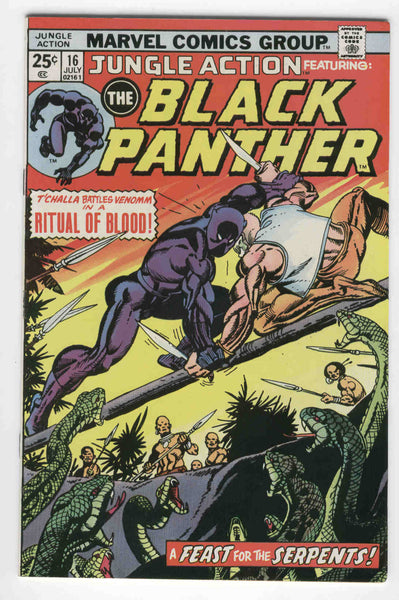 Jungle Action #16 Black Panther Ritual Of Blood Billy Graham Art Bronze Age Classic FVF