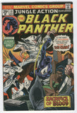 Jungle Action #19 The Black Panther Vs. The Klan Billy Graham Bronze Age Key FVF