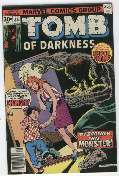 Tomb Of Darkness #22 Bronze Age Horror! VGFN