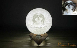 2 Steps Create a Keepsake Gifts: Put Photo/Words on the Moon Lamp