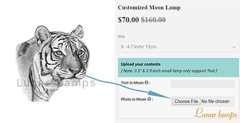 order moon lamp on LunarLamps