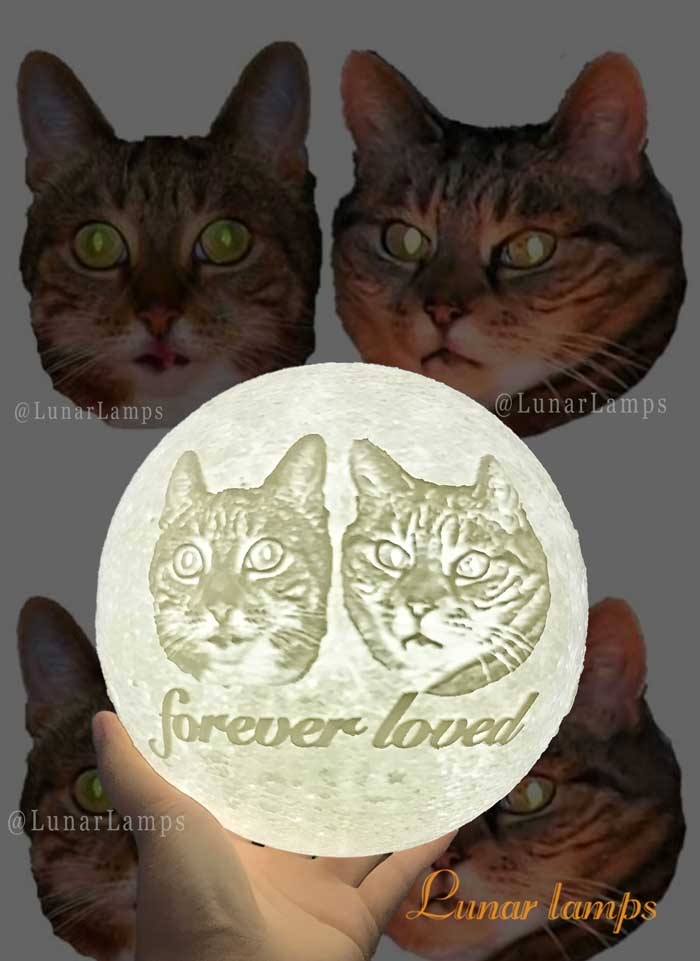 cat photo moon lamp