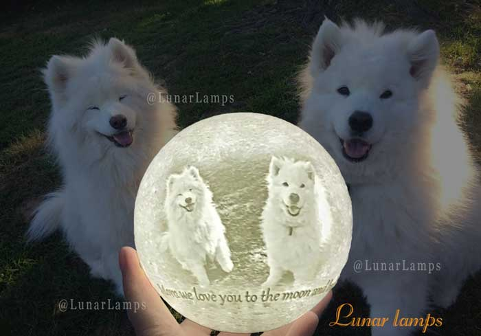 features photos of your beloved pets on moon lamp