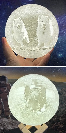customized Moon Lamp for pets