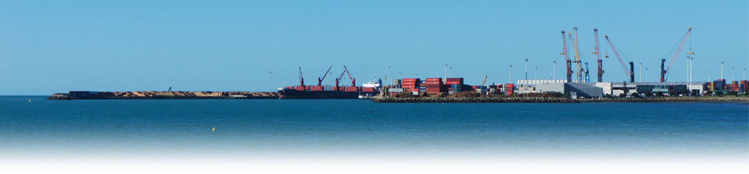 napier port top shipping banner