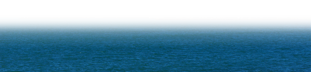napier port bottom shipping banner