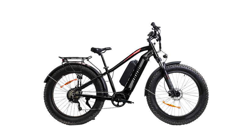 750w electric bike
