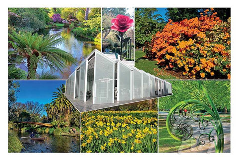 238 - Post Art Postcard - Botanical Gardens Composite