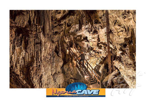 24 - Post Art Postcard - Ngarau Caves