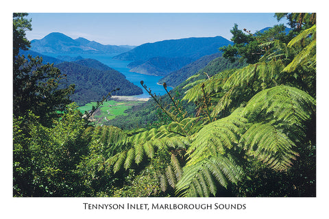 34 - Post Art Postcard - Tennyson Inlet Marlborough Sounds