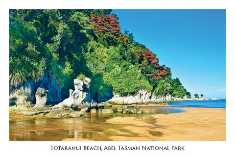 3 - Post Art Postcard - Totaranui Beach