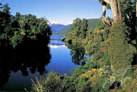 40 - Post Art Postcard - Lake Moeraki