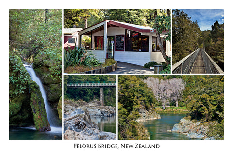 47 - Post Art Postcard - Pelorus Bridge Reserve