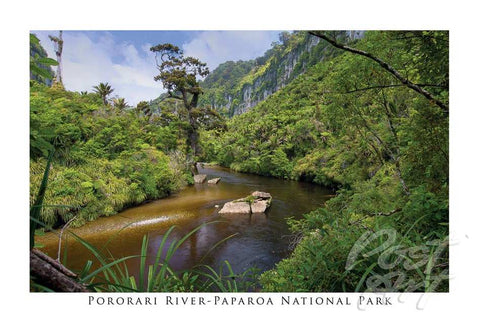 48 - Post Art Postcard - Pororari River