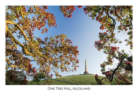 549 - One Tree Hill, Auckland
