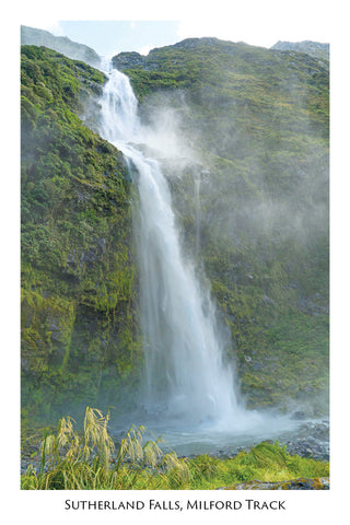 554 - Sutherland Falls, Milford Track