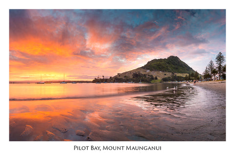 631 - Post Art Postcard - Pilot Bay, Mount Maunganui