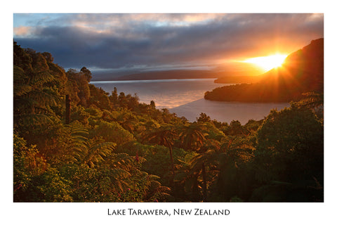 643 - Post Art Postcard - Lake Tarawera