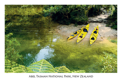 667 - Postcard - Sea Kayaks - Abel Tasman