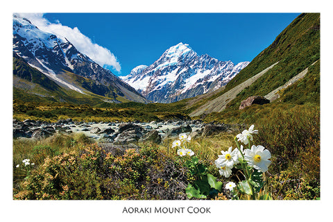 93 - Post Art Postcard - Mt Cook with Lily Horizontal