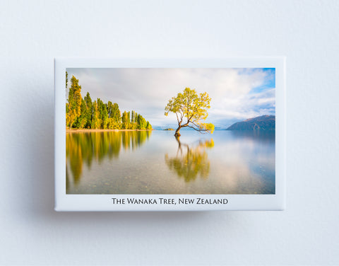 FM0007 - Post Art Magnet - The Wanaka Tree