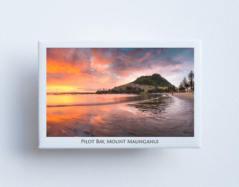 FM0048 - Post Art Magnet - Pilot Bay